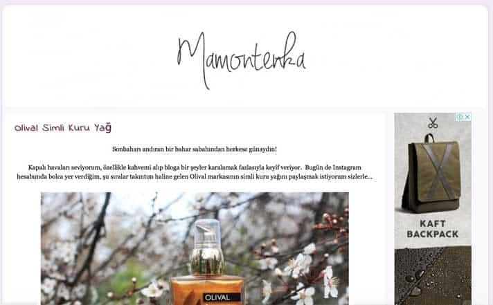En iyi makyaj blogları - Mamontenka
