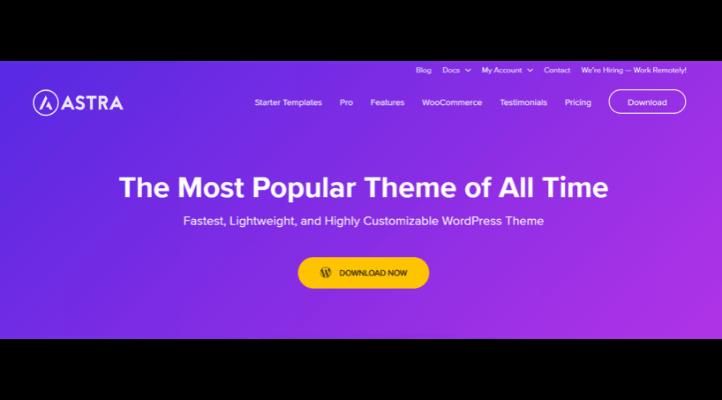 En Hızlı WordPress Teması - Astra
