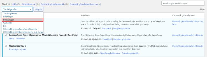 Wordpress beyaz sayfa sorunu için eklenti iptali