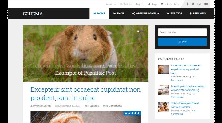 En Hızlı WordPress Teması - Schema