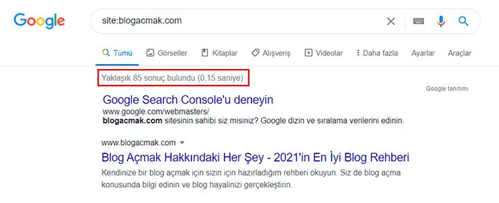 Sitem Google'da Görünmüyor