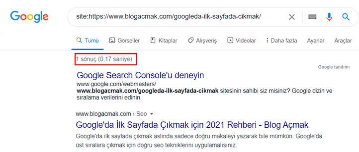 Sitem Google'da Görünmüyor 2