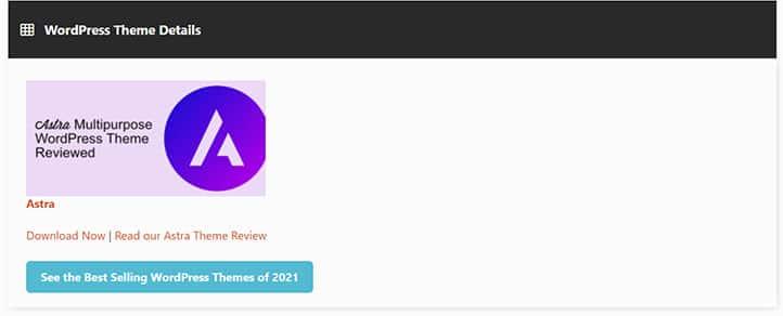 Wordpress-IsItWP-Araci-ile-Tema-Adi-Bulma-Sonuclar
