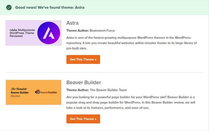 Wordpress-WPBeginner-Aracı-ile-Tema-Adı-Öğrenme---Sonuçlar