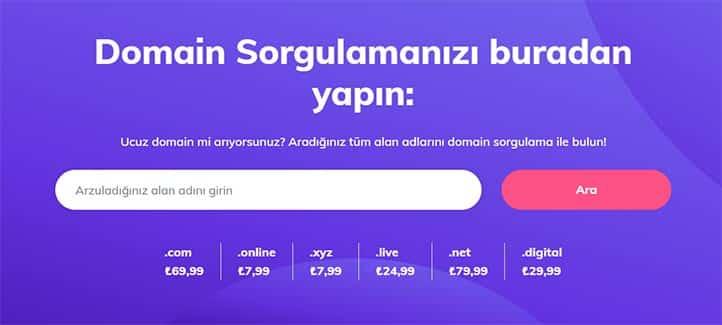 Domain Sorgulama Ekranı - Hostinger