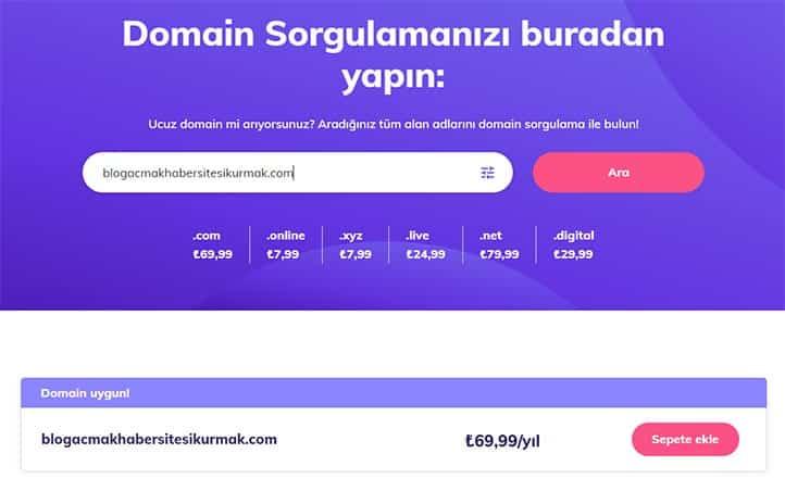 Domain Sorgulama Sonuç Ekranı